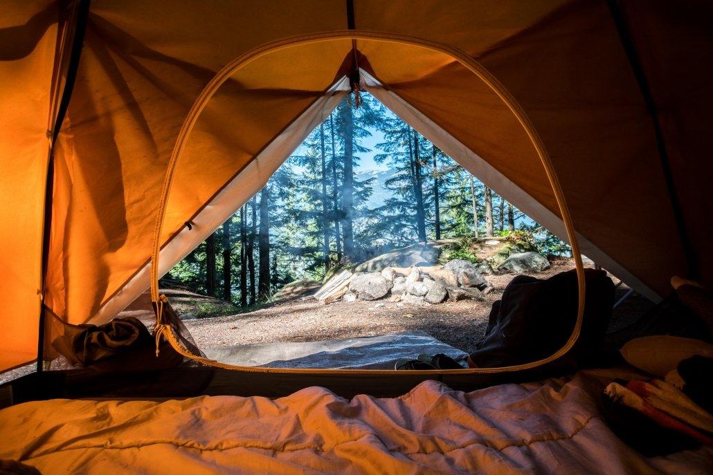 foto di un bosco scattata all'interno di una tenda da campeggio, scelta apposta per fare quest'escursione.
