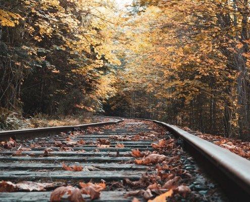 Viaggi in autunno: i più belli da fare in treno in Italia